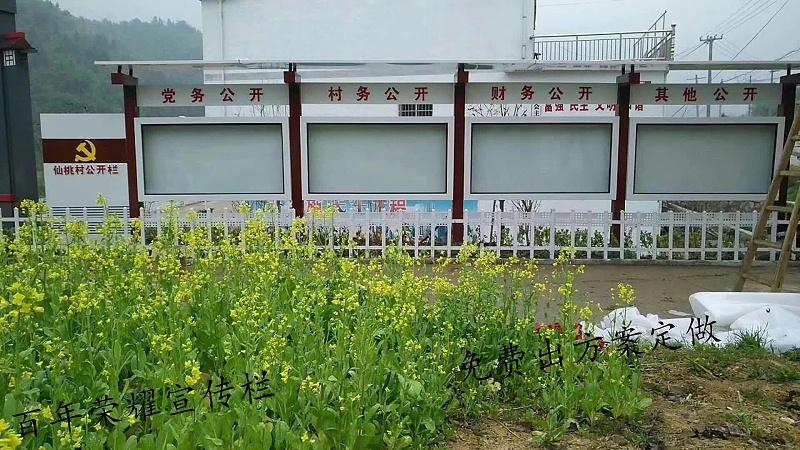 安徽六安金寨县一村务公开栏